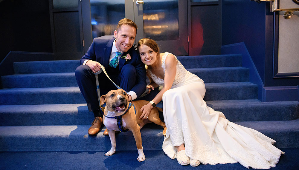 bride and groom sitting on steps with dog